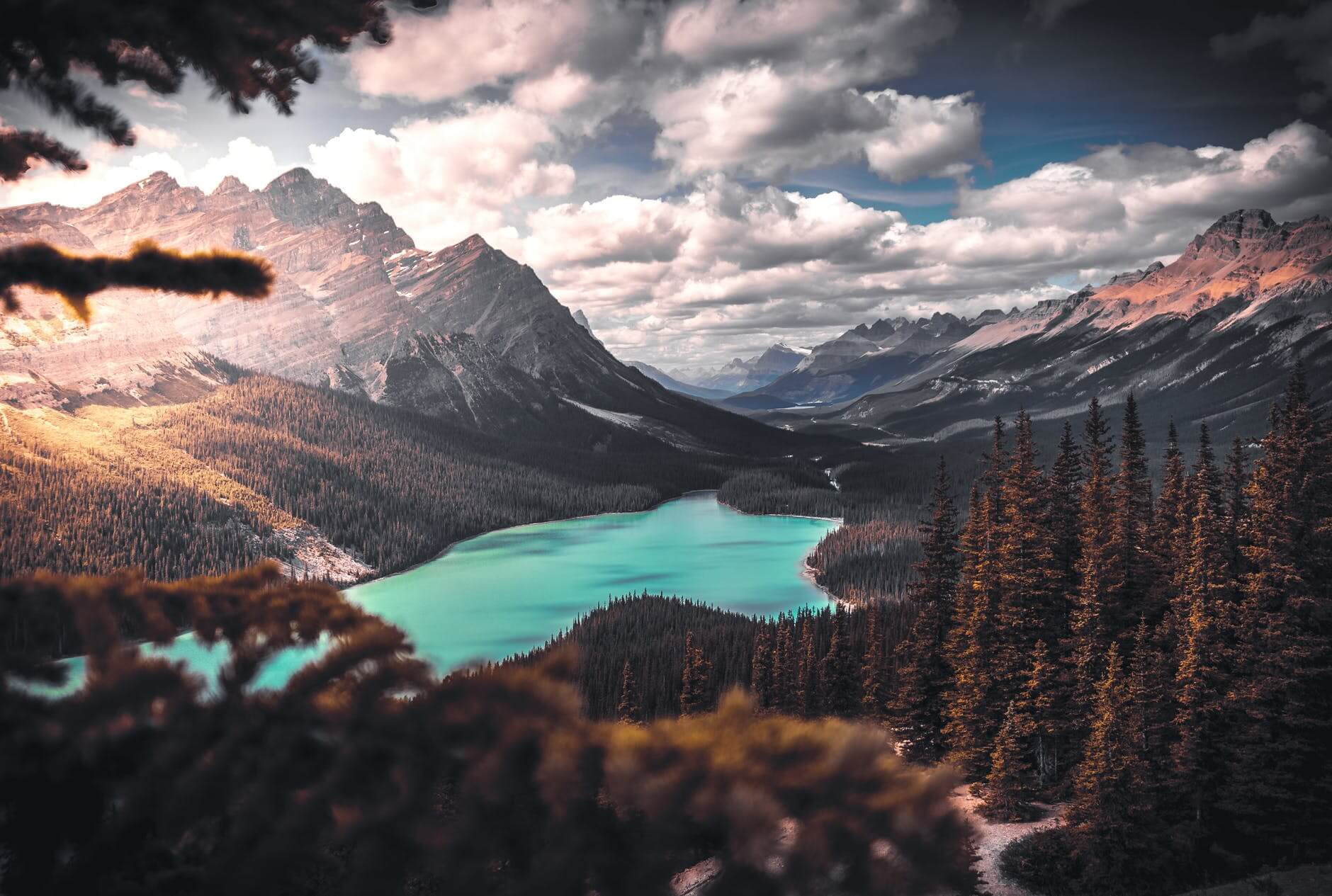 Lake in forest - Fullscreen Lightbox